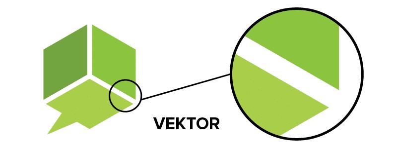 Kako razlikovati rastersku i vektorsku grafiku