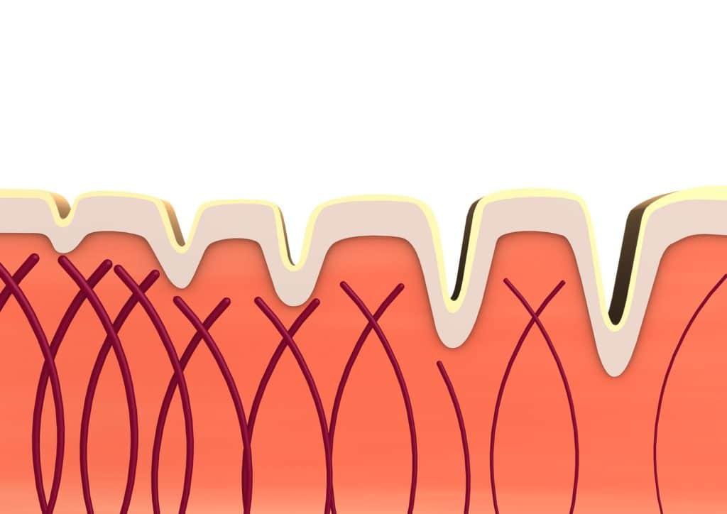 Kako održati kožu zdravom i snažnom? Pomoći će vam hidrokolagen Novelius Medical